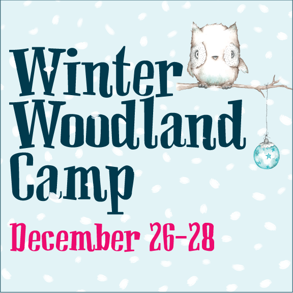 Winter Break Camp December 26th-28th