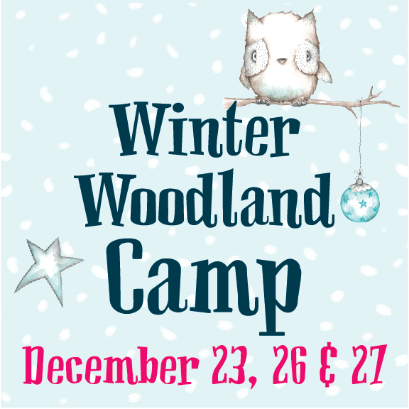 Winter Break Camp December 23rd, 26th And 27th